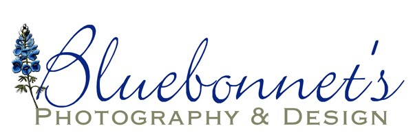 Bluebonnet's Photography and Design