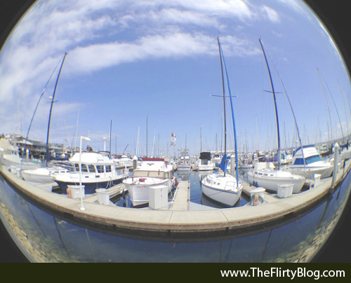 Monterey Harbor, Boats