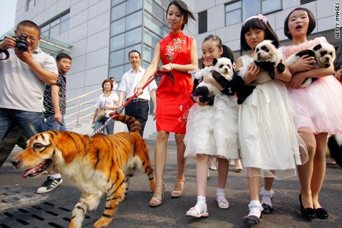 Fakta Unik Dan Aneh 25 Fakta Mengejutkan Tentang China