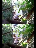 image of hidden camera gay porno