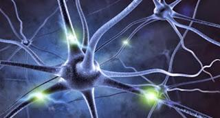 Major breakthrough in understanding Alzheimer's disease