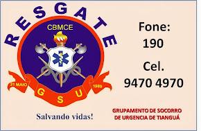 GSU-TIANGUÁ
