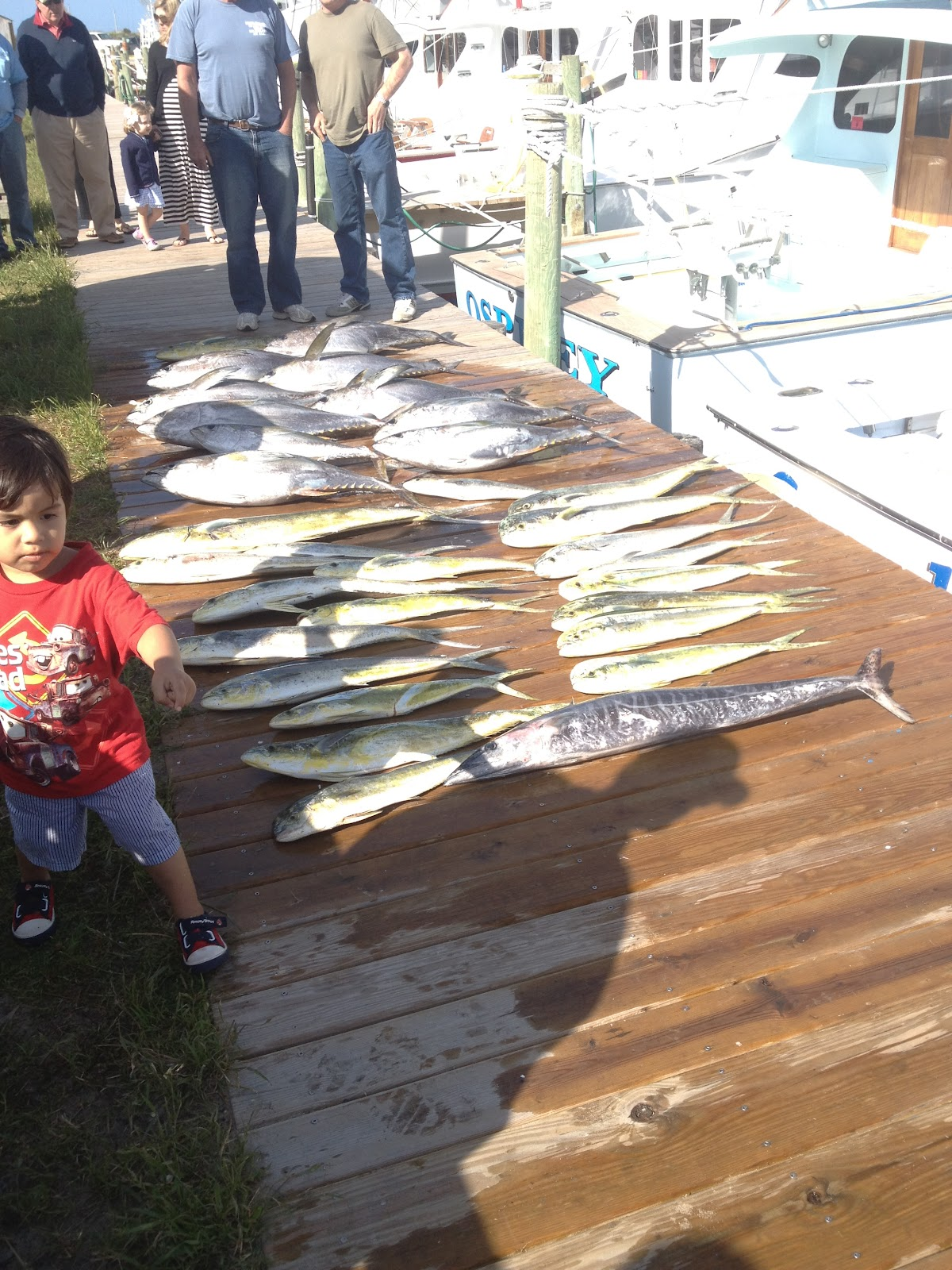 Outer banks nags head nc fishing report for North carolina fishing report