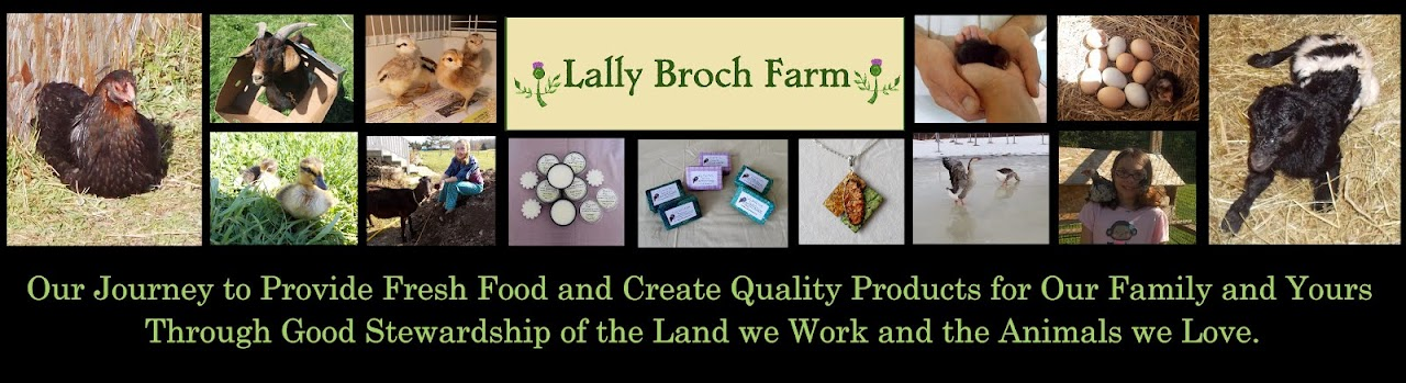 Lally Broch Farm: A Maine Family Homestead