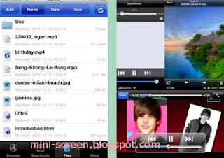 Free Download Manager Lite Application Interface on iPhone