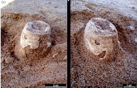 http://sciencythoughts.blogspot.co.uk/2015/01/bird-eggs-from-late-cretaceous-colonial.html