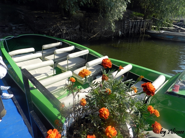 barca-descopera-delta-dunarii