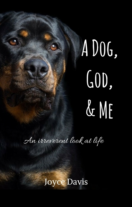 A Dog, God,& Me