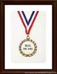 Premio Blog del mes x  2!