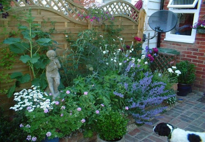 Small Garden Designs Pictures on Small Garden Design   Interior Exterior Design