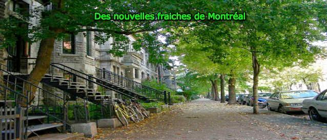 Des nouvelles fraiches de Montréal