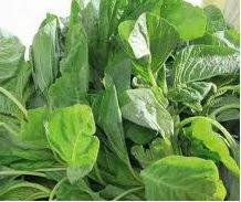 Manfaat sayur bayam untuk kesehatan