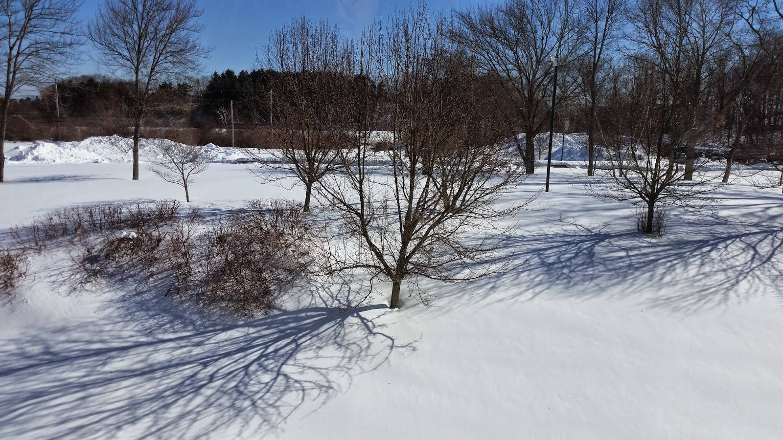 A picture of North Shore Community College Danvers Campus covered in snow in February, 2015