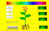 Label the plant