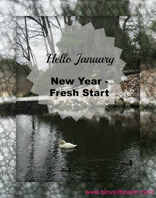 January New Year Fresh Start