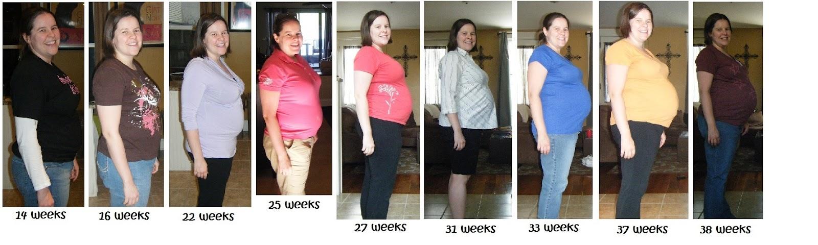 Weight Gain: Weight Gain Progression