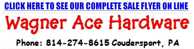 http://acehardware.shoplocal.com/AceHardwareCircular/BrowseByPage/Index/?StoreID=2432839&PromotionCode=Ace-150701SS&PromotionViewMode=1