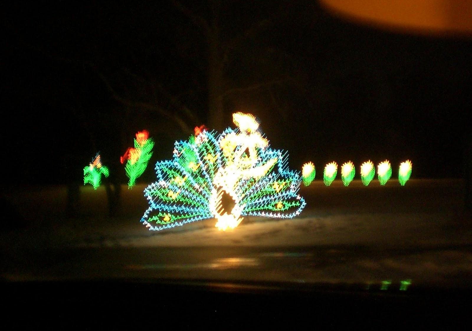 see lights of the season at tanglewood katrena