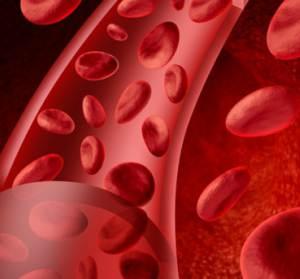 Alimentos-que-purificam-o-sangue