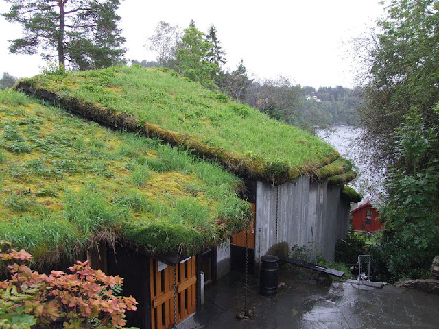 كيف تبدو أسطح المنازل النرويج