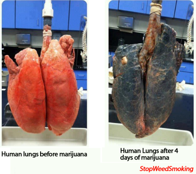Mamada con humo en los pulmones