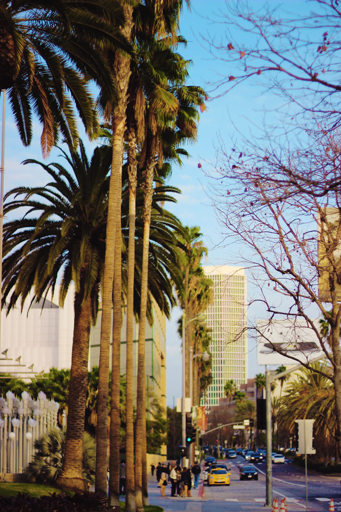 Places to see on wilshire blvd