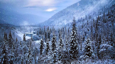 Kenai Peninsula, Alaska (© GeoStills/Alamy) 417