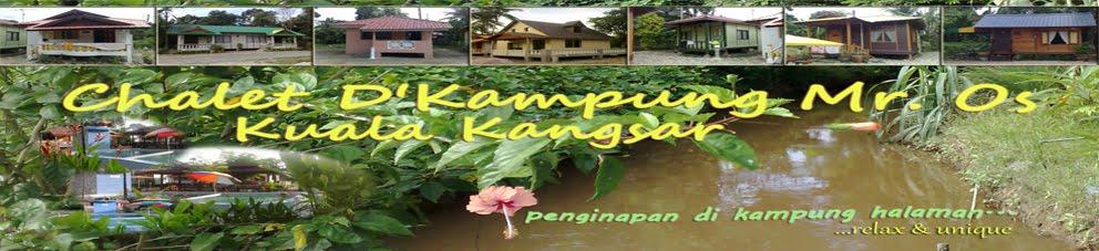 Chalet & Homestay Kuala Kangsar - D' Kampung Mr.Os