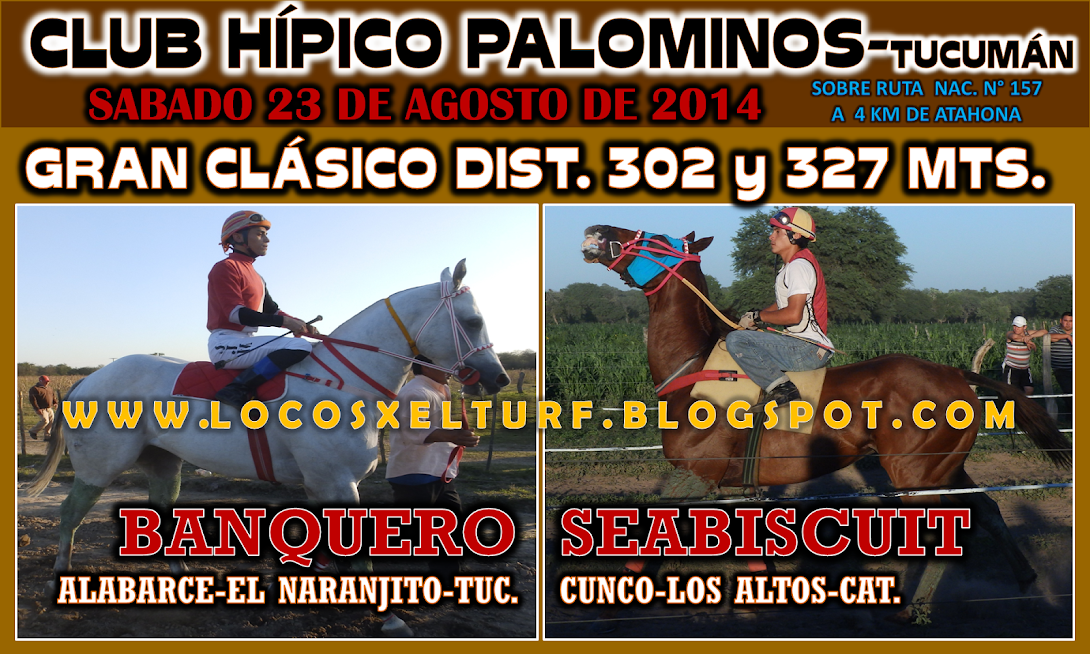 23-08-14-CLAS-HIP. PALOMINOS