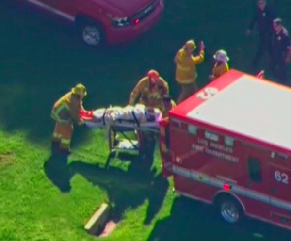 Harrison Ford, herido muy grave en un accidente de avioneta