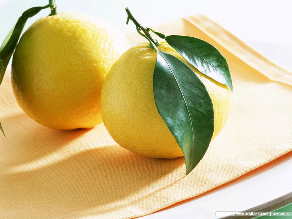 http://3.bp.blogspot.com/-lLNJt_QxUn0/TZ82SzcTmBI/AAAAAAAAABo/8f3VhHfN1uQ/s1600/Lemon-Wallpaper-fruit-6334028-1024-768.jpg