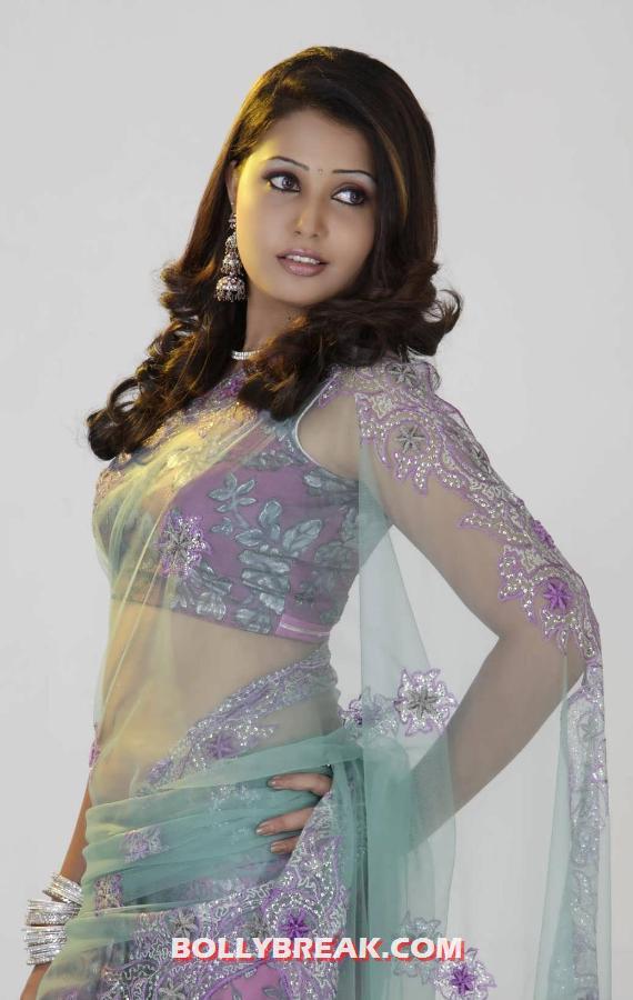 http://3.bp.blogspot.com/-lLNp31jlH1U/UClXzo9sGRI/AAAAAAAA7jU/P_LZS0k0wYk/s1600/Sandra-Jose-showing-off-her-gorgeous-body-in-a-Lilac-sari-with-a-transparent-pallu.jpg
