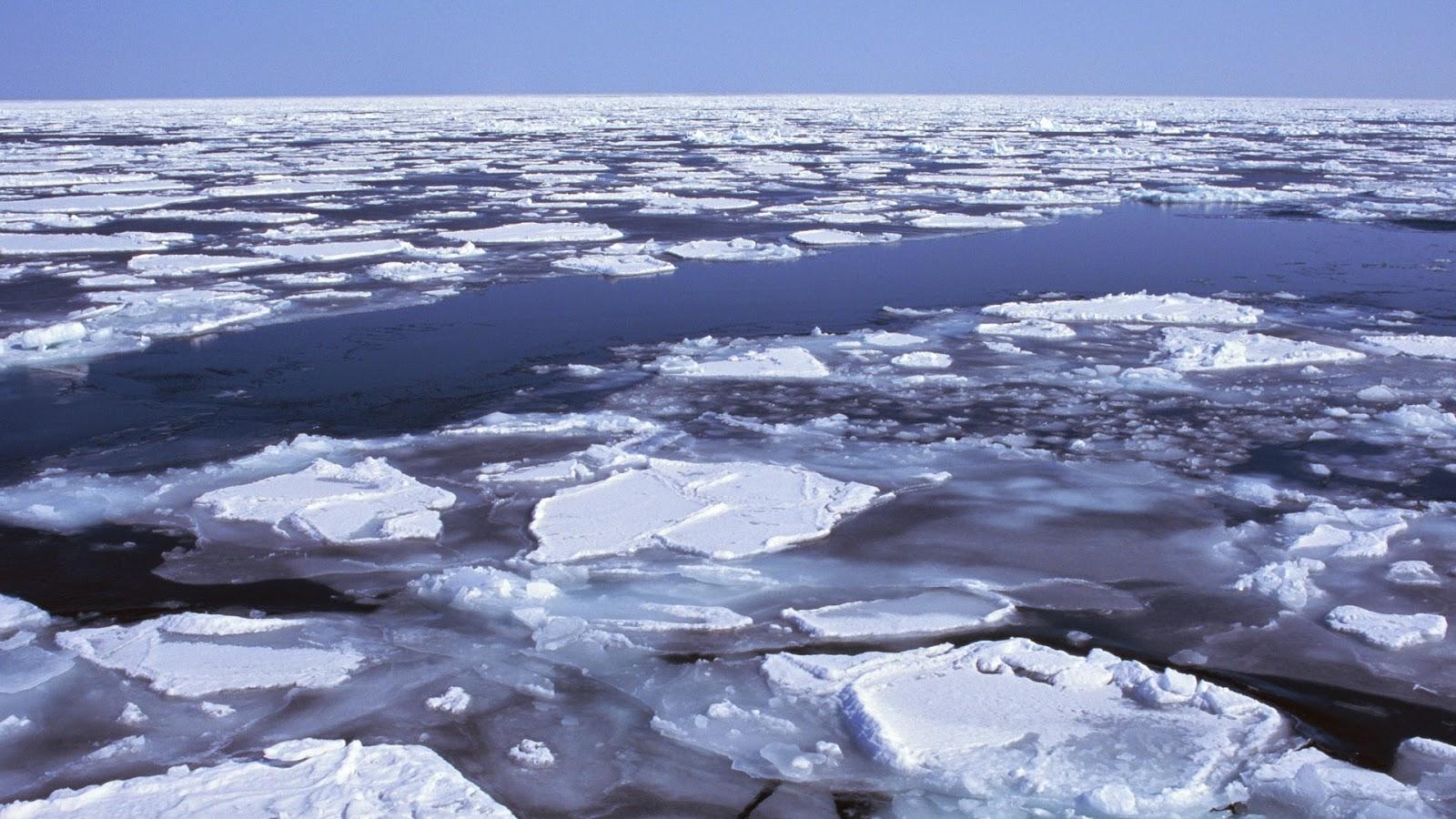 Wallpaper met ijsschotsen in zee