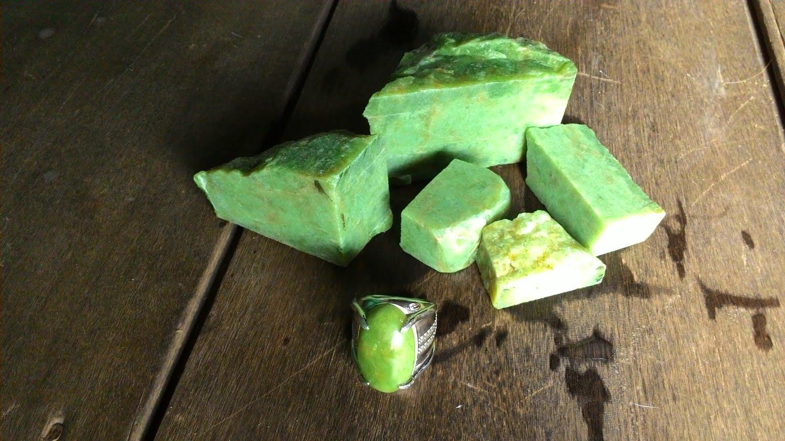 Green sojol / Giok Hercules
