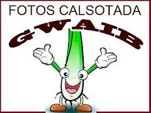 CALSOTADA GWAIB