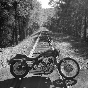 1991 Harley Davidson FXLR