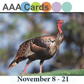 http://aaacards.blogspot.com/2015/11/game-52-thanksthanksgiving.html