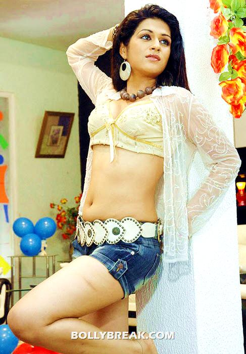 Shraddha Das navel show hot photo shoot
