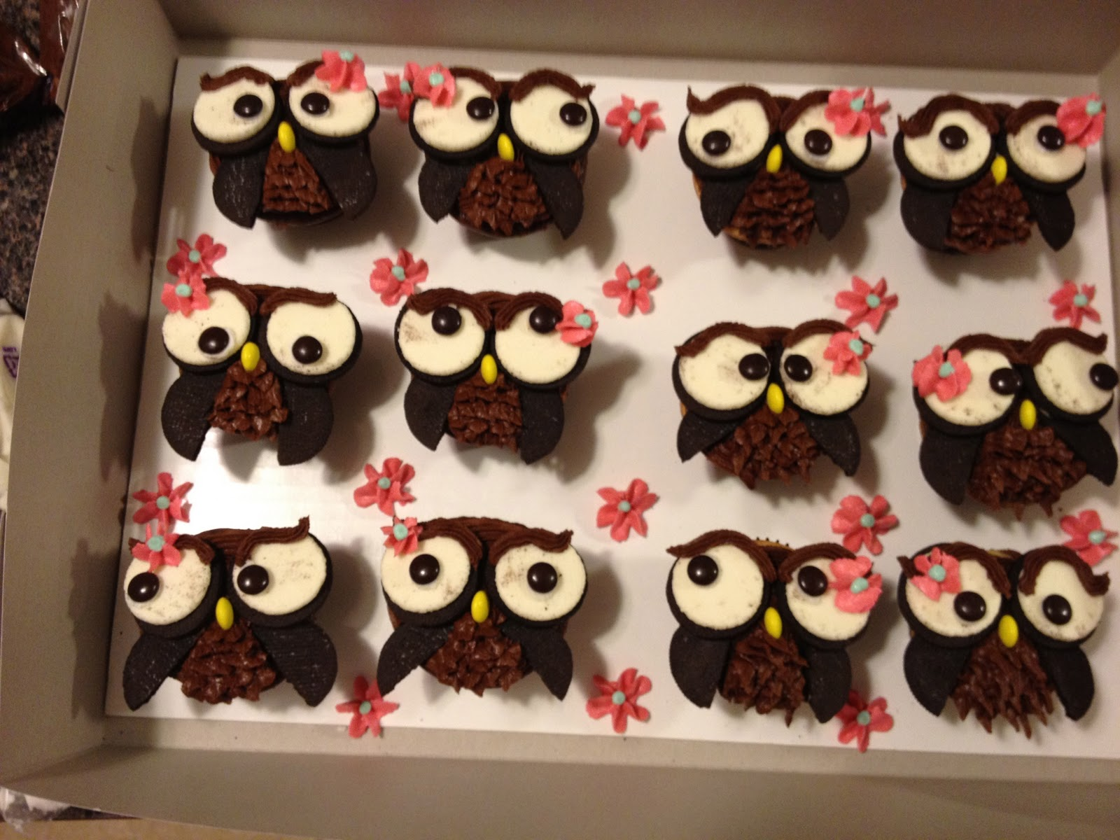 Sugar and Spice and Everything Iced Owl Cupcakes