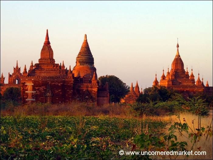 Bagan became a central powerbase in the mid 9th century under King Anawratha, who unified Burma under Theravada Buddhism. Over the course of 250 years, Bagan's rulers and their wealthy subjects constructed over 10,000 religious monuments in the Bagan plains. The prosperous city grew in size and grandeur, and became a cosmopolitan center for religious and secular studies. Monks and scholars from as far as India, Ceylon as well as the Khmer Empire came to Bagan to study prosody, phonology, grammar, astrology, alchemy, medicine, and law.
