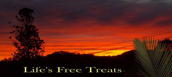 life's free treats