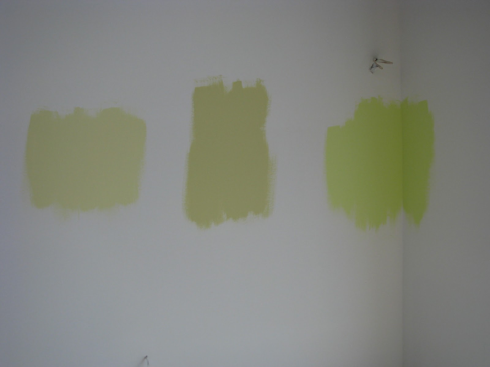 Welcome To Turtle House For The Paint Junkies