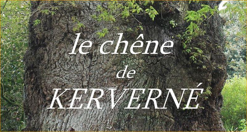 http://guemenesurscorff.blogspot.fr/2015/05/concours-arbre-de-lannee-le-chene-de.html