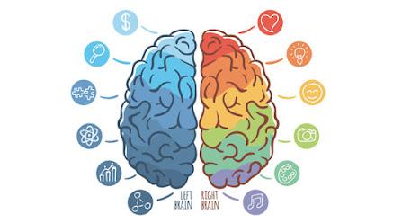 Neuropsicopedagogia e Neuropsicologia
