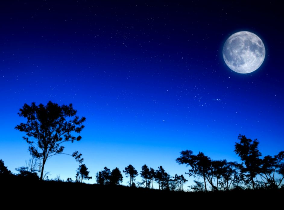 Beautiful Night Landscape background in 1024x768 resolution  HD