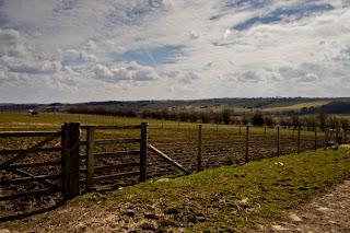 Countryside near Harewood House