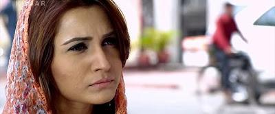 Mediafire Resumable Download Link For Punjabi Movie Sadda Haq (2013)