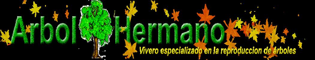 Arbol Hermano