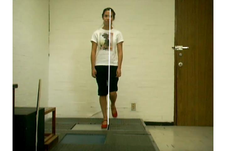 Kinesiología de la danza   Investigación en danza