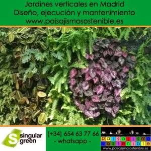 Venta de musgo sphagnum jardiner a y paisajismo for Autoarq paisajismo